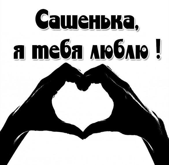 Картинка я люблю тебя Сашенька