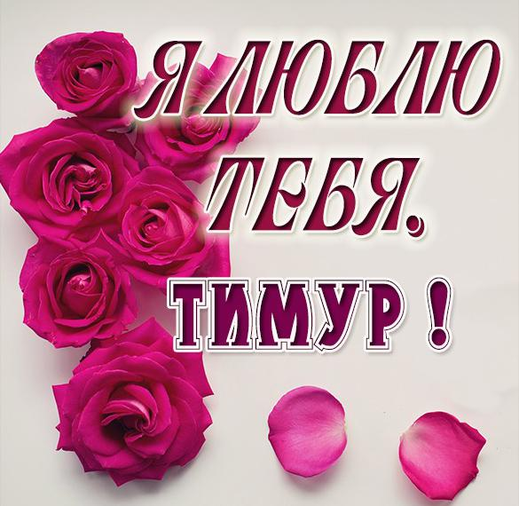 Картинка я люблю тебя Тимур