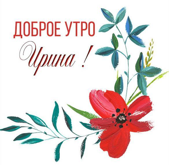 Красивая картинка доброе утро Ирина