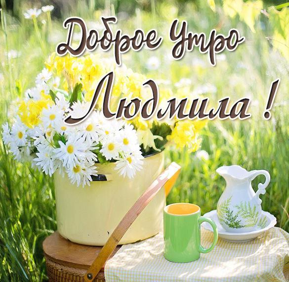 Красивая картинка доброе утро Людмила