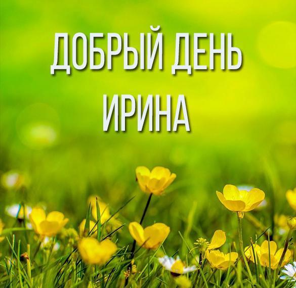 Красивая картинка добрый день Ирина