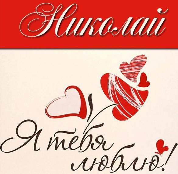 Красивая картинка Николай я тебя люблю