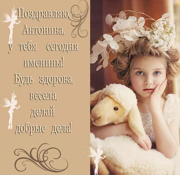 Красивая картинка с днем Аннушки