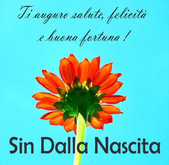 Красивая картинка с днем рождения на итальянском