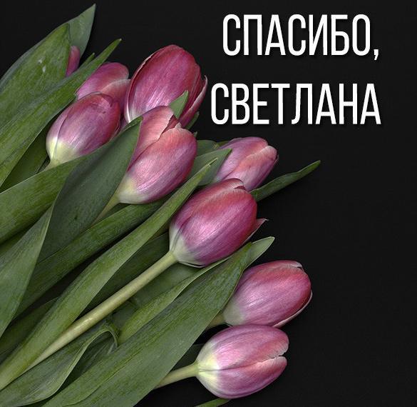 Красивая картинка спасибо Светлана