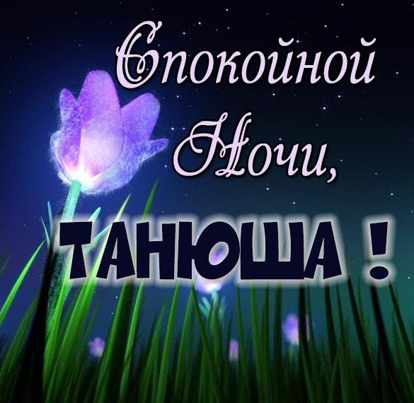 Красивая картинка спокойной ночи Танюша