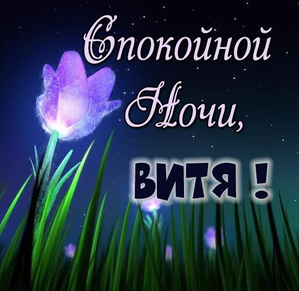 Красивая картинка спокойной ночи Витя