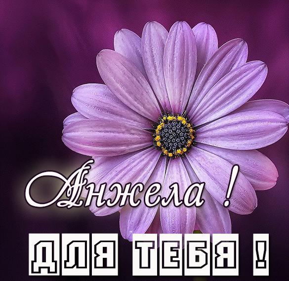 Красивая открытка для тебя Анжела