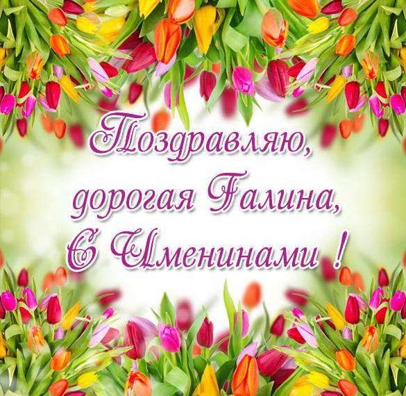 Красивая открытка с днем имени Галина
