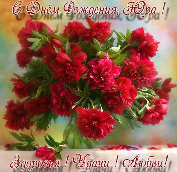 Бесплатная красивая открытка с днем рождения для Юры