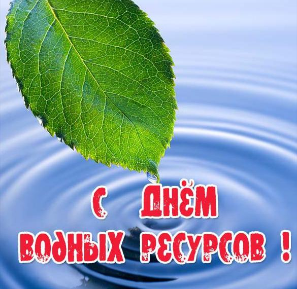 Красивая открытка с днем водных ресурсов