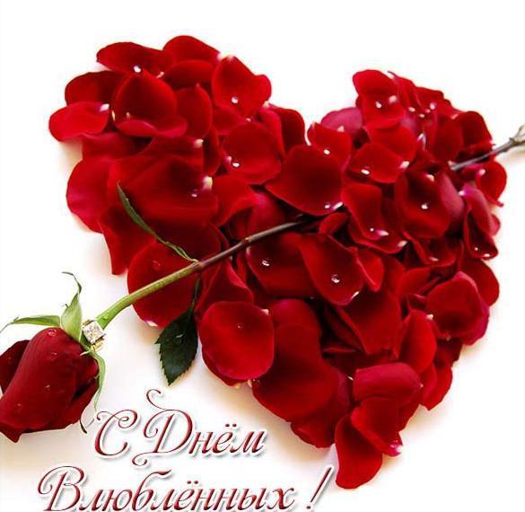 Красивая открытка с днем всех влюбленных