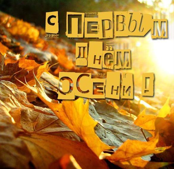 Красивая открытка с первым днем осени