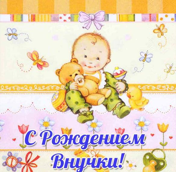 Красивая открытка с рождением внучки