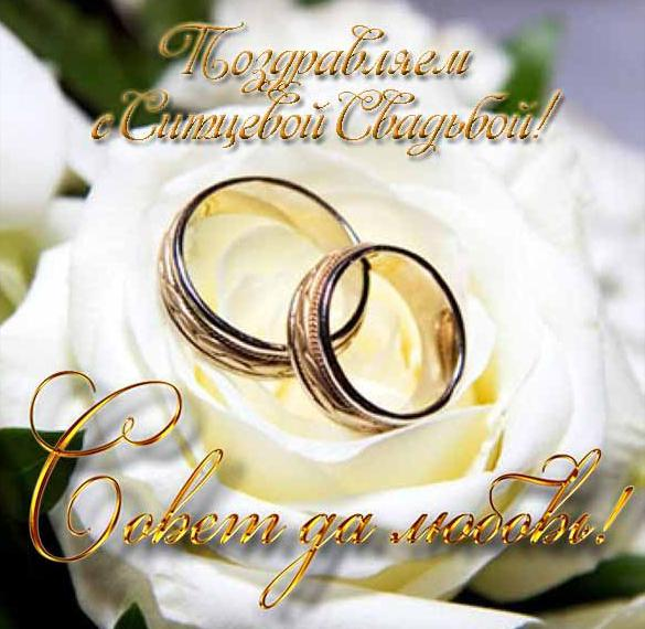 sitcevaya-svadba-otkritki-s-pozdravleniyami foto 13