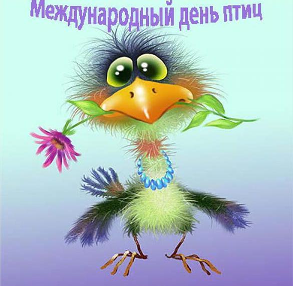 Картинка на международный день птиц