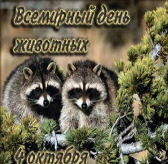 Картинка на международный день защиты животных
