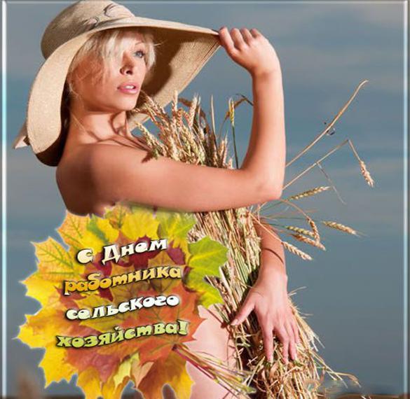 Электронная открытка на день сельского хозяйства
