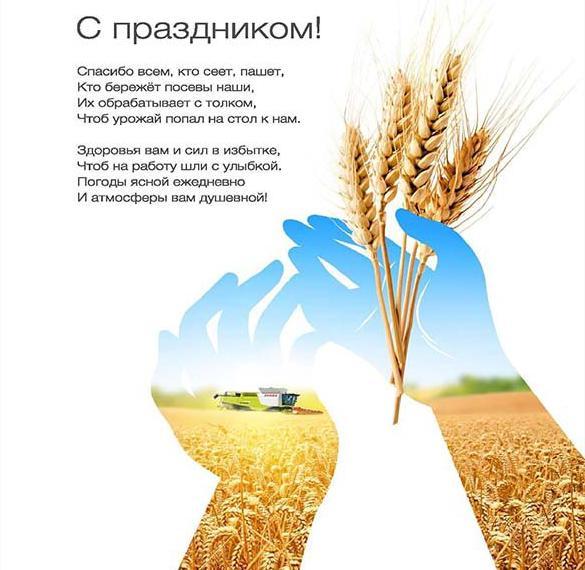 Открытка на день сельскохозяйственного работника