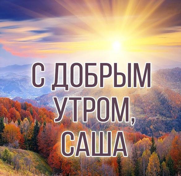 Открытки желаю всем добра и мира
