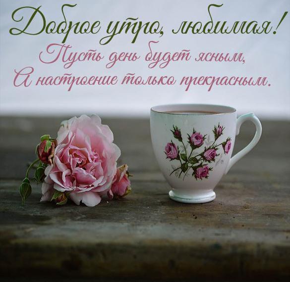 Открытка доброе утро любимая своими словами девушке