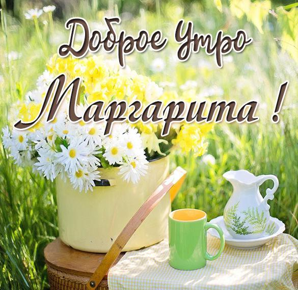 Открытка доброе утро Маргарита