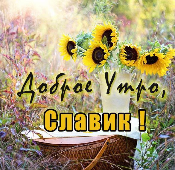 Открытка доброе утро Славик