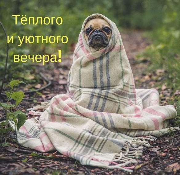 Открытка доброго вечера теплого уютного