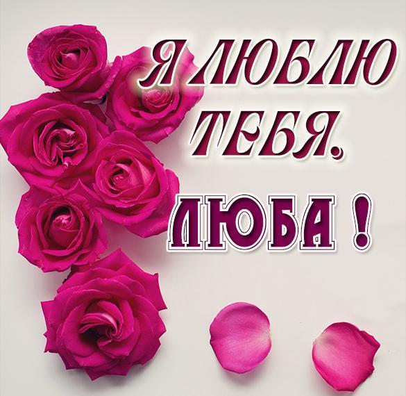 Открытка Люба я тебя люблю