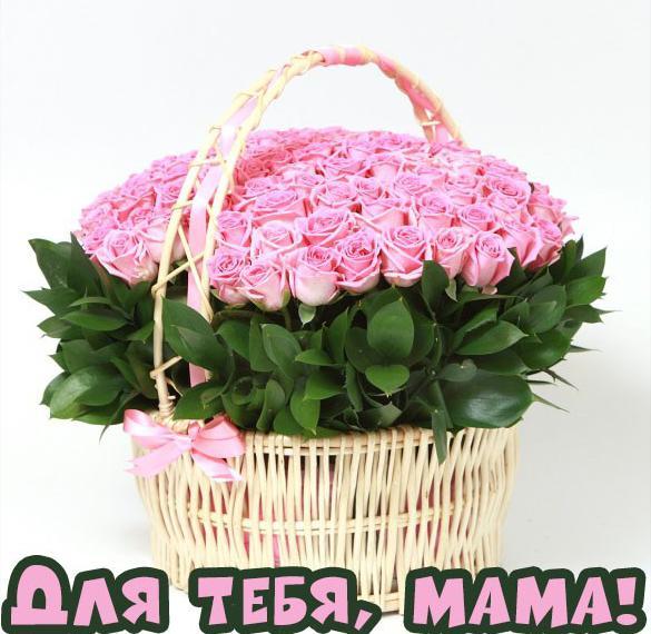 Открытка маме розы