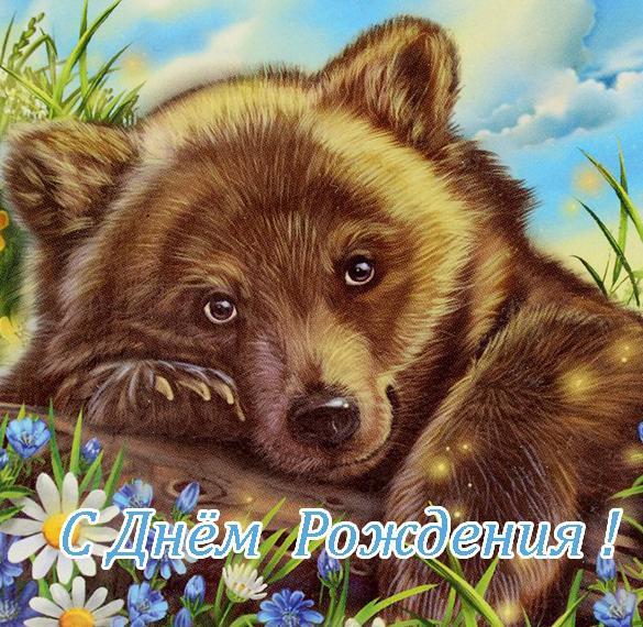 Открытка с медведем с днем рождения