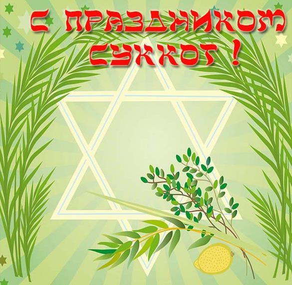Открытка на праздник Суккот