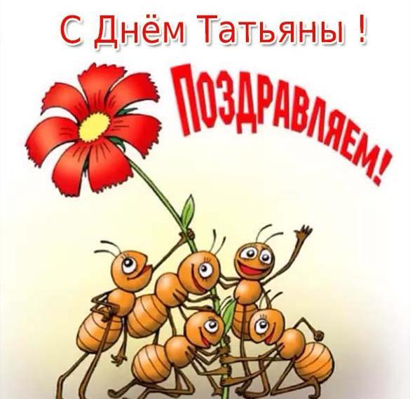 Прикольная открытка на Татьянин день