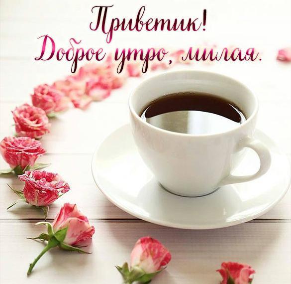Открытка приветик доброе утро милая