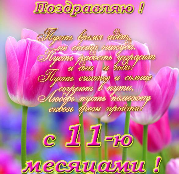 pozdravlenie-11-mesyacev-otkritka foto 17