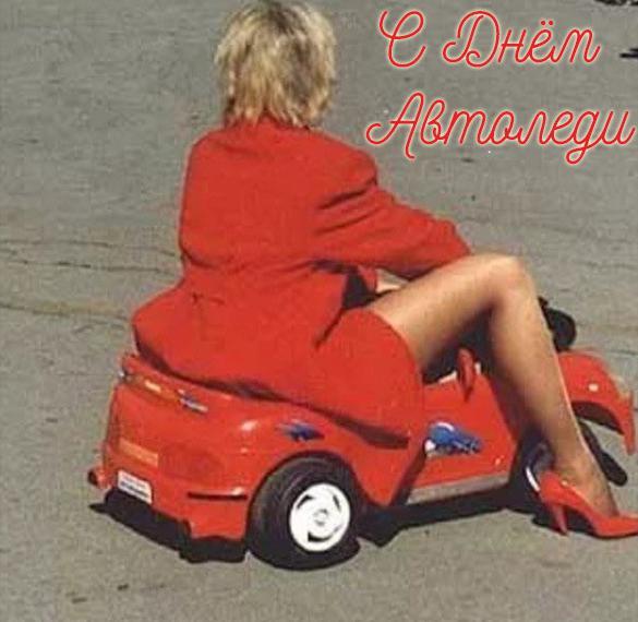 Фото открытка с днем автоледи с приколом