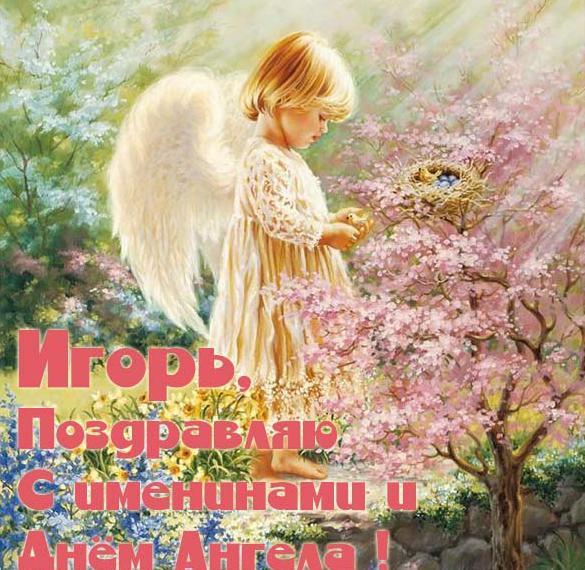 Бесплатная открытка с днем Игоря
