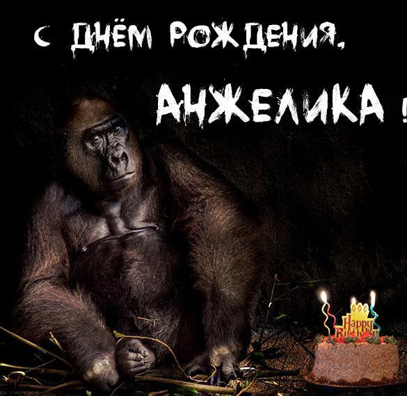 Прикольная открытка с днем рождения Анжелика
