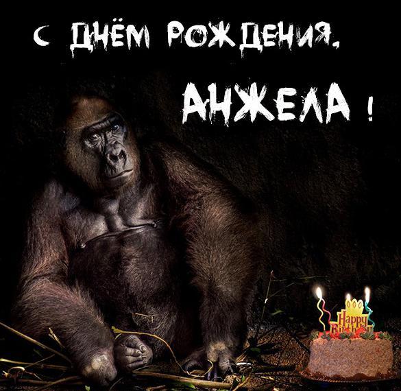 Прикольная открытка с днем рождения для Анжелы