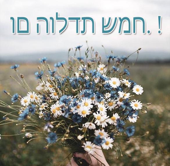 северной части пожелания и поздравления на иврите больше интересного читайте