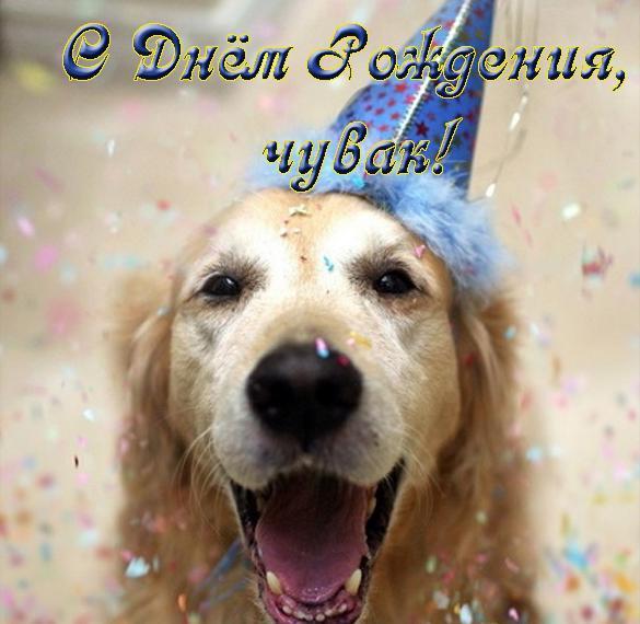 Прикольная открытка с днем рождения подростку мальчику
