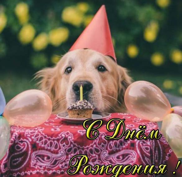 Прикольная открытка с днем рождения подруге детства