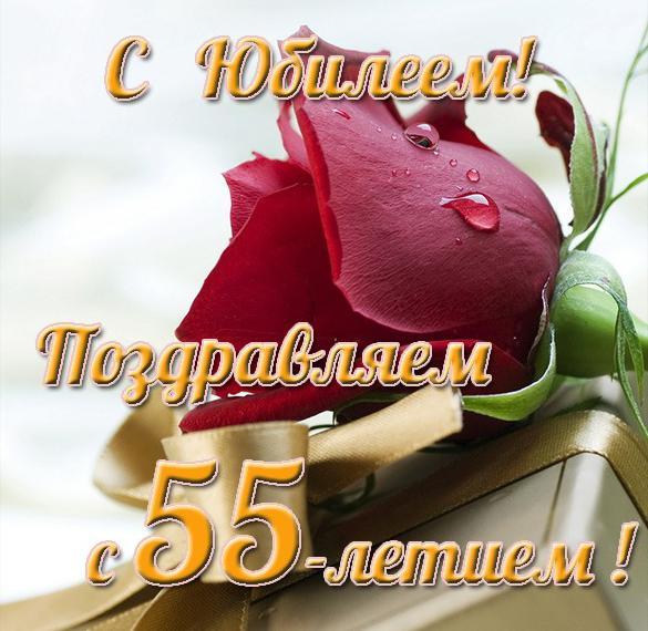 Красивая открытка с днем рождения на юбилей 55 лет