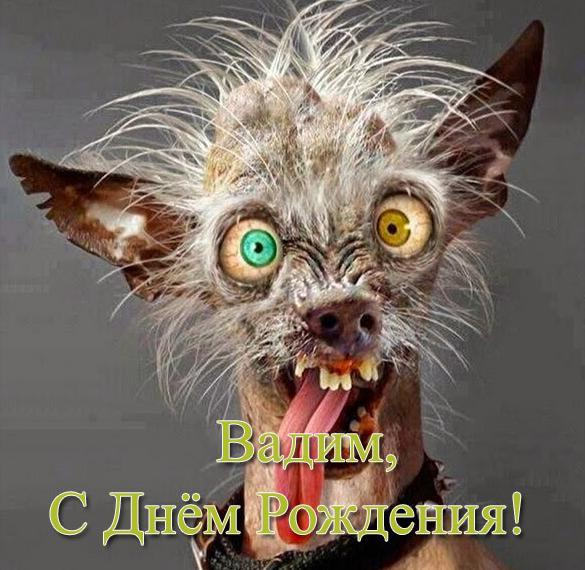 Прикольная открытка с днем рождения Вадиму