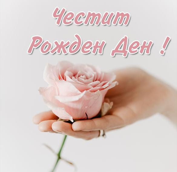 Открытка с днем рождения женщине на болгарском