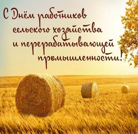 Открытка с днем сельского хозяйства