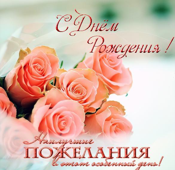 pozdravlenie-s-rozhdeniem-devushki-otkritka foto 17