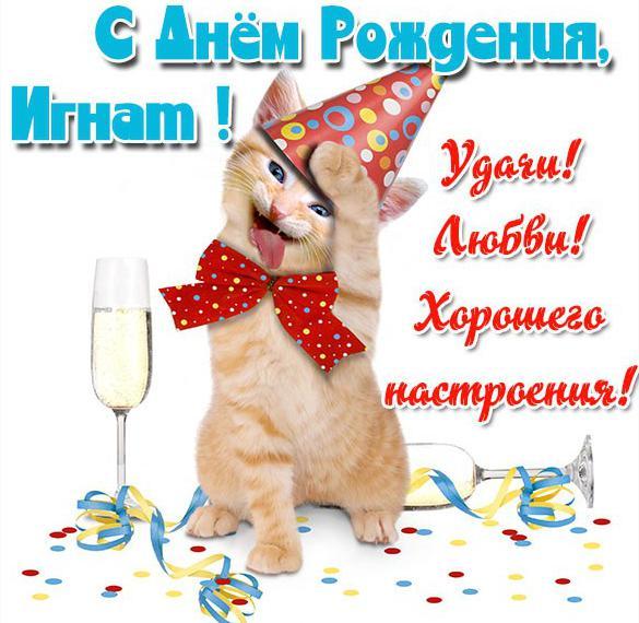 Прикольная открытка с днем рождения Игнат
