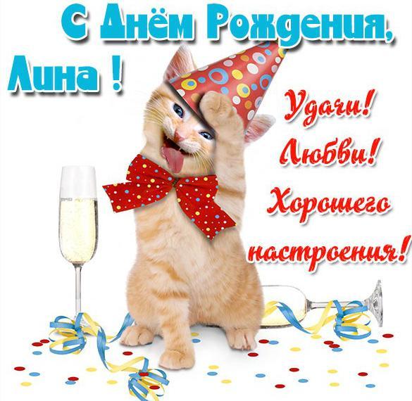 Прикольная открытка с днем рождения Лина
