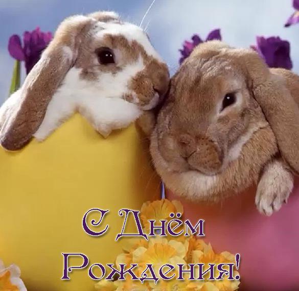 Открытка с днем рождения с кроликом